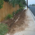 One of our clients had a small strip of grass that was between the fence and the side walk. People walking their dogs through this area would allow their dog […]